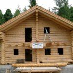 Holzhaus 9